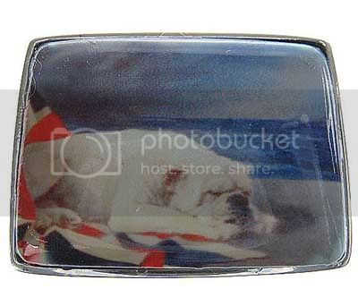 bulldog pillbox Image
